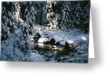 Denny Creek Greeting Card