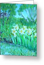 Dependable Daffodils Greeting Card
