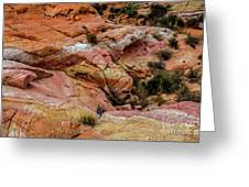 Depth Of The Canyon Greeting Card