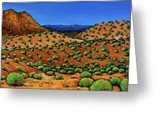 Desert Afternoon Greeting Card