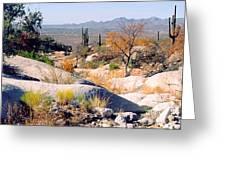 Desert Autumn Greeting Card