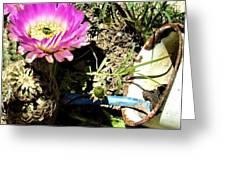 Desert Blossom Greeting Card