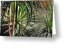 Desert Botanical Greeting Card