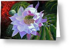 Desert Cactus Flower Greeting Card