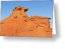 Desert Dog Greeting Card