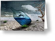 Desert Dolphin Bottle Nature Greeting Card