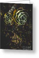 Desert Flowers Greeting Card