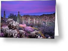 Desert Garden Greeting Card