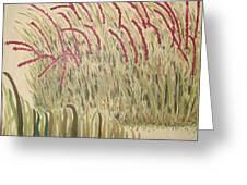 Desert Grasses Greeting Card