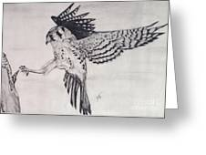 Falcon I Greeting Card