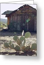 Desert Home Greeting Card