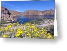 Desert Lake Greeting Card