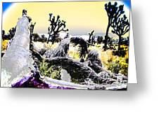 Desert Landscape - Joshua Tree National Monment Greeting Card