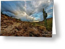Desert Landscape With Clouds Greeting Card