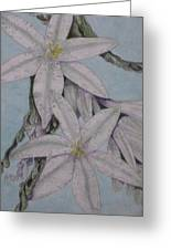 Desert Lillie  Close-up Greeting Card