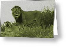 Desert Lions Greeting Card