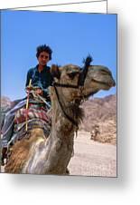 Desert Locomotion Greeting Card