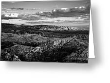 Desert Overlook #2 Bw Greeting Card
