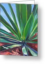 Desert Plant Greeting Card