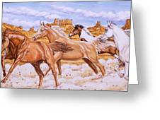 Desert Run Greeting Card by Richard De Wolfe