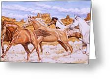 Desert Run Greeting Card
