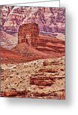 Desert Scene L Greeting Card