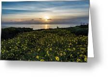 Desert Sunflowers Coastal Sunset 2 Greeting Card