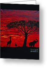 Desert Sunset 3 Greeting Card