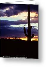 Desert Sunset Greeting Card