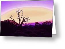 Desert Sunset With Silhouetted Tree 2 Greeting Card