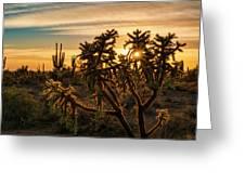 Desert Sunshine Shining Through  Greeting Card