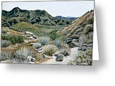 Desert Trail Greeting Card
