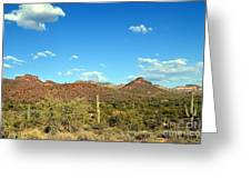 Desert View 340 Greeting Card