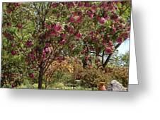 Desert Willow Tree Greeting Card