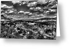 Desertscape Greeting Card