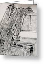 Desk And Curtain Greeting Card by Diana Prout
