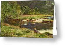 Detail Of A Highland Loch Scene Greeting Card