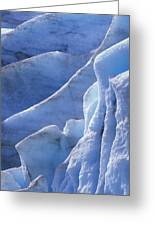 Detail Of Blue Ice On Exit Glaicer Greeting Card