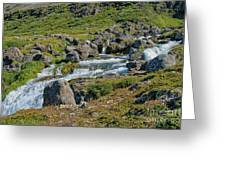 Detail Of  Dynjandi Waterfall Greeting Card