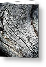 Detail Of Old Weathered Wood Greeting Card