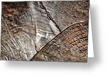 Detail Of Old Wood Sawn Greeting Card