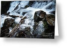 Detail Wild Stream Greeting Card