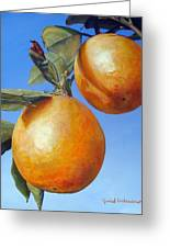 Deux Oranges Greeting Card