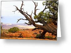 Devils Garden 2 Greeting Card