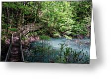 Devil's Millhopper Gainesville Fl II Greeting Card