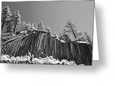 Devil's Postpile - Frozen Columns Of Lava Greeting Card