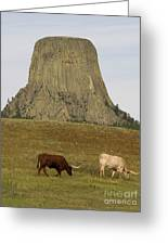 Devils Tower 2 Greeting Card