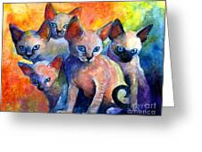 Devon Rex Kitten Cats Greeting Card