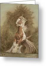 Devon The Gypsy Horse Greeting Card