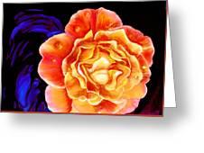 Dewy Peach Rose Greeting Card